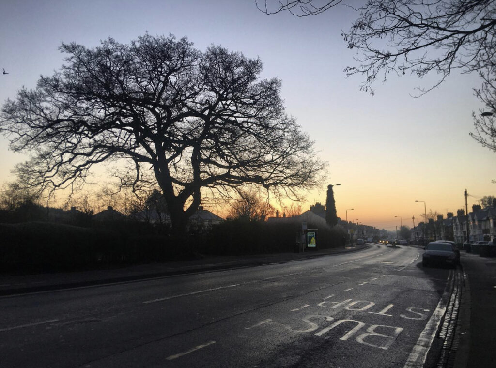A photograph of a street during sunset or sunrise featuring the silhouette of a tree in Oxford.